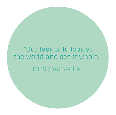 Our task is to look at the world and see it whole - EF Schumacher